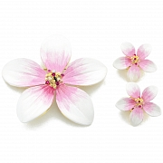 White Hawaiian Plumeria Flower Swarovski Crystal Earrings and Brooch pin Gift Set